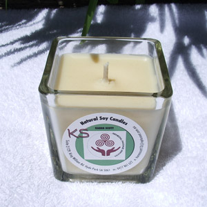french cinnamon soy candle
