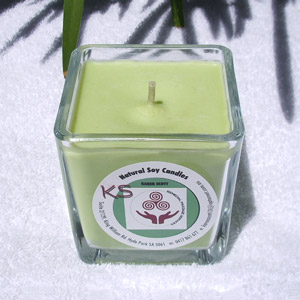 cinnamon and apple soy candle